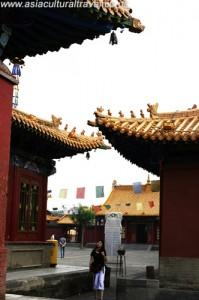 Dazhao Hohhot