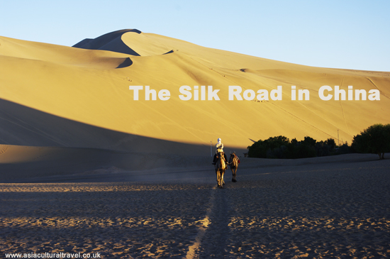 silk road tour 550